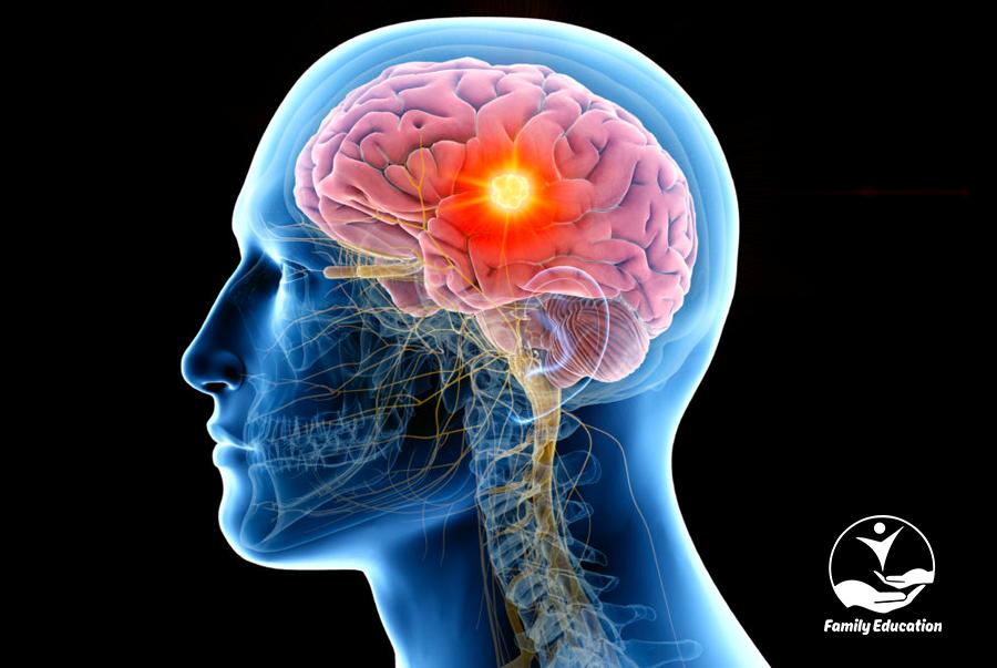 5 ý tưởng hoang đường về não bộ cần loại bỏ - FAM EDUCATION