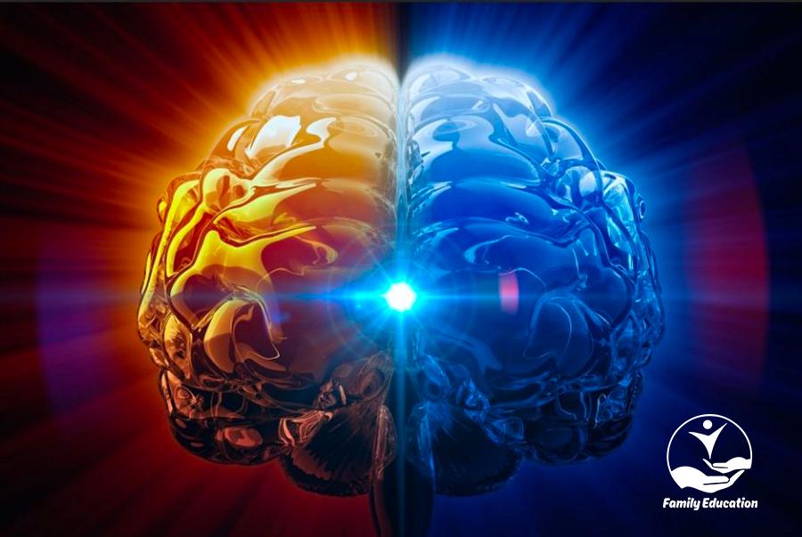 8 dấu hiệu cho biết não bộ của bạn đang phát triển - FAM EDUCATION