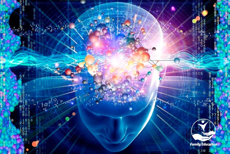 Não bộ của bạn cuộc đời của bạn - FAM EDUCATION